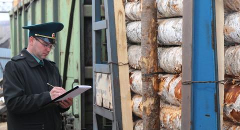 С 1 октября таможенный контроль в Богучанском районе Красноярского края стал оперативнее