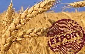 Экспортеры ждут условного злака. Закупки пшеницы на вывоз приостановились до снижения пошлины