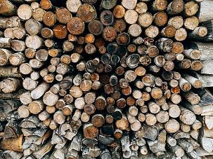 В России 1 января 2021 года начался эксперимент по прослеживаемости оборота древесины