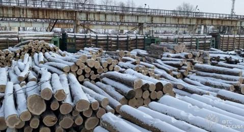 Хабаровский край просит пересмотреть решение о запрете экспорта необработанной древесины