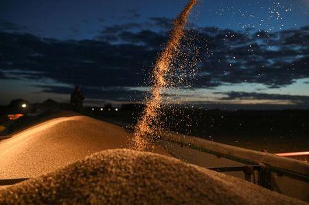 Экспортные цены на пшеницу РФ продолжили рост на прошлой неделе вслед за мировыми