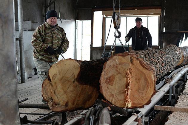 Трутнев анонсировал создание госкомпании для экспорта круглого леса