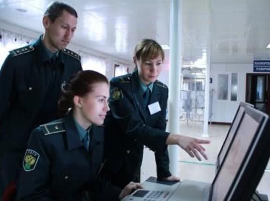Новую передовую технологию таможенного оформления товаров электронной торговли протестируют в ЕАЭС