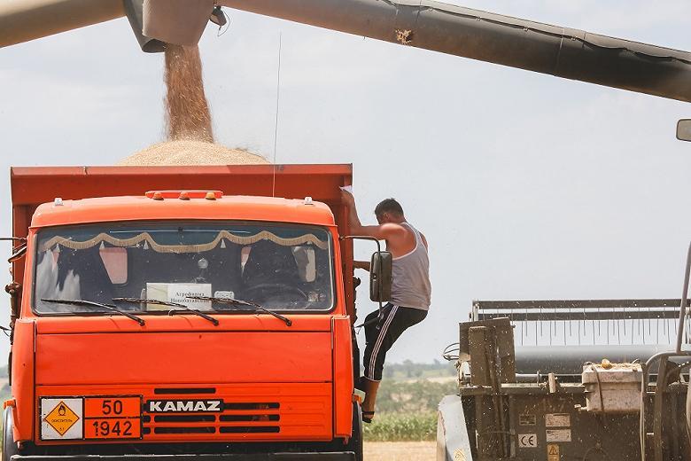 В России подсчитали потери аграриев от плавающей зерновой пошлины