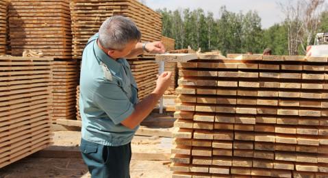 Иркутская таможня: на экспорт отгружено 4,5 млн кубометров лесоматериалов