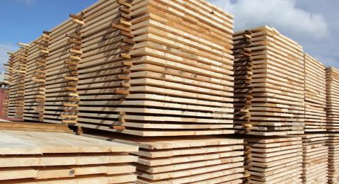 Иркутская таможня выявила новый эпизод преступной деятельности лесоэкспортера по факту контрабанды леса в Китай